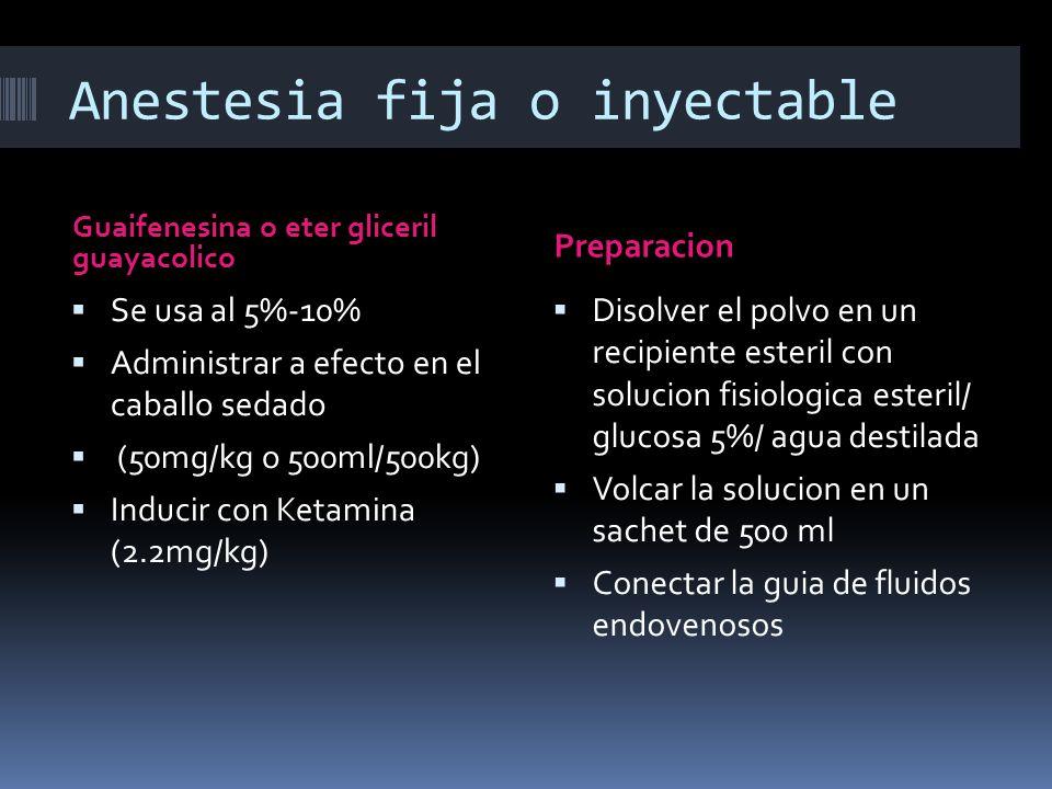 Anestesia fija o inyectable Guaifenesina o eter gliceril guayacolico Preparacion Se usa al 5%-10% Administrar a efecto en el caballo sedado (50mg/kg o