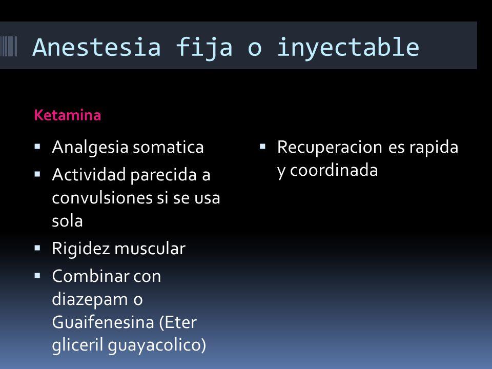 Anestesia fija o inyectable Ketamina Analgesia somatica Actividad parecida a convulsiones si se usa sola Rigidez muscular Combinar con diazepam o Guai