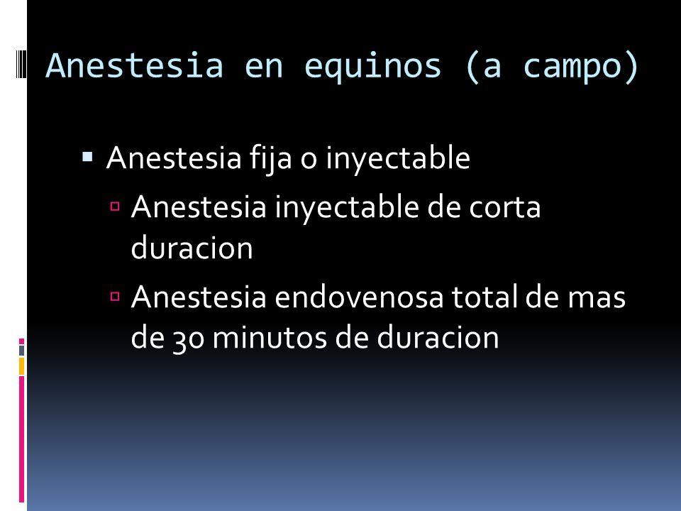 Anestesia en equinos (a campo) Anestesia fija o inyectable Anestesia inyectable de corta duracion Anestesia endovenosa total de mas de 30 minutos de d