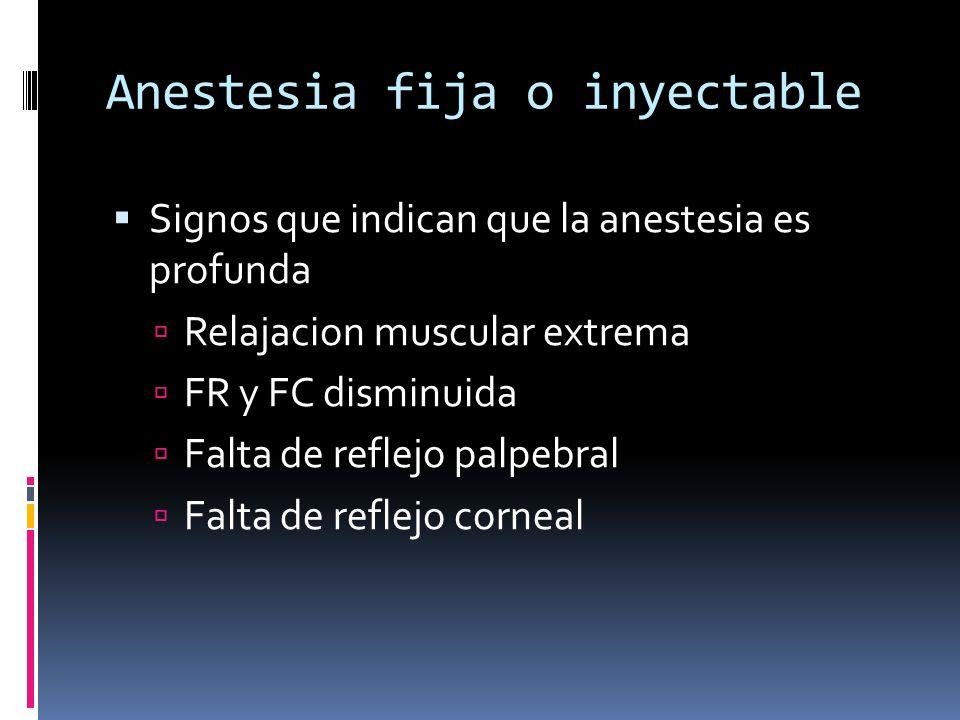 Anestesia fija o inyectable Signos que indican que la anestesia es profunda Relajacion muscular extrema FR y FC disminuida Falta de reflejo palpebral