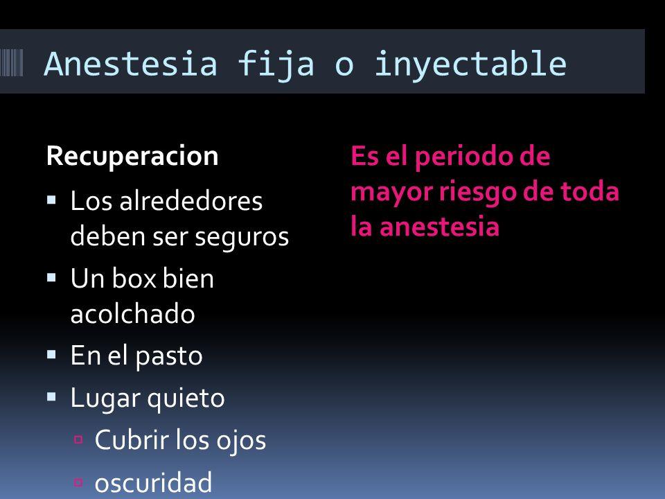 Anestesia fija o inyectable Recuperacion Es el periodo de mayor riesgo de toda la anestesia Los alrededores deben ser seguros Un box bien acolchado En