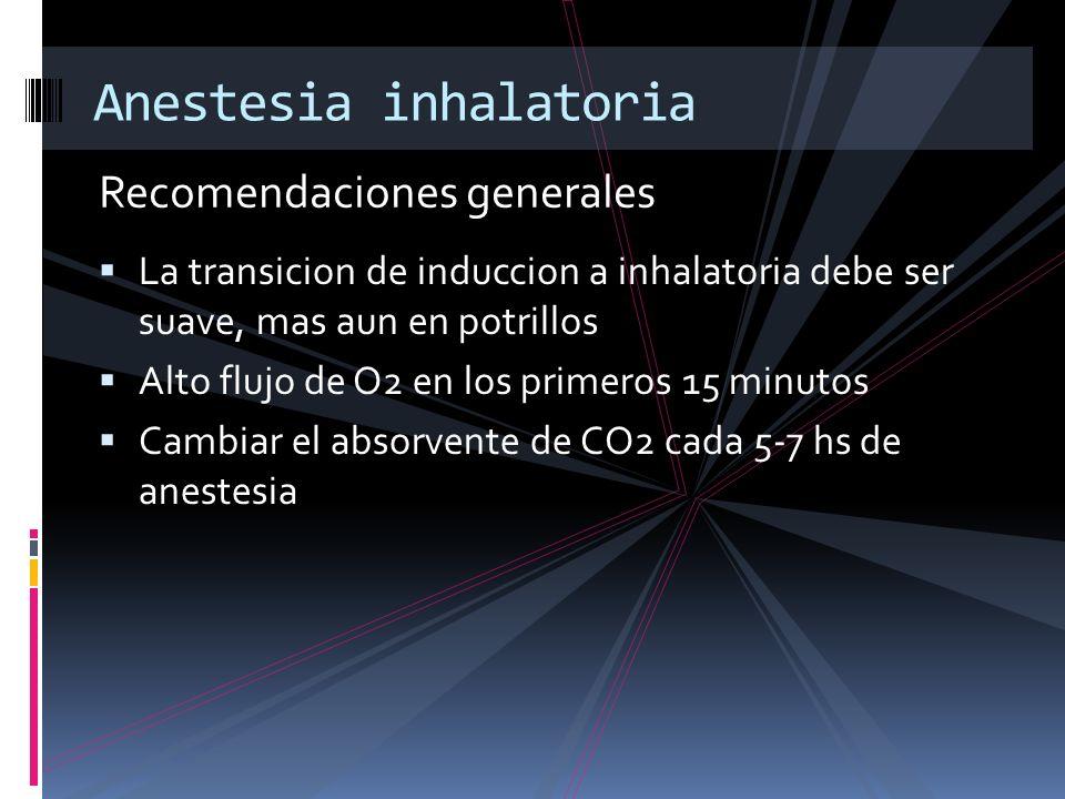 Recomendaciones generales Anestesia inhalatoria La transicion de induccion a inhalatoria debe ser suave, mas aun en potrillos Alto flujo de O2 en los