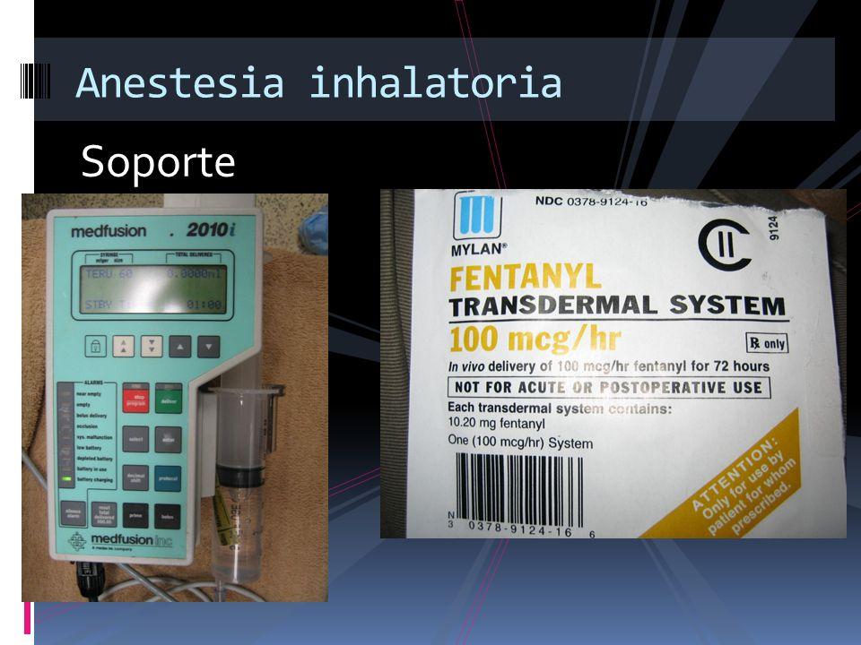 Soporte Anestesia inhalatoria