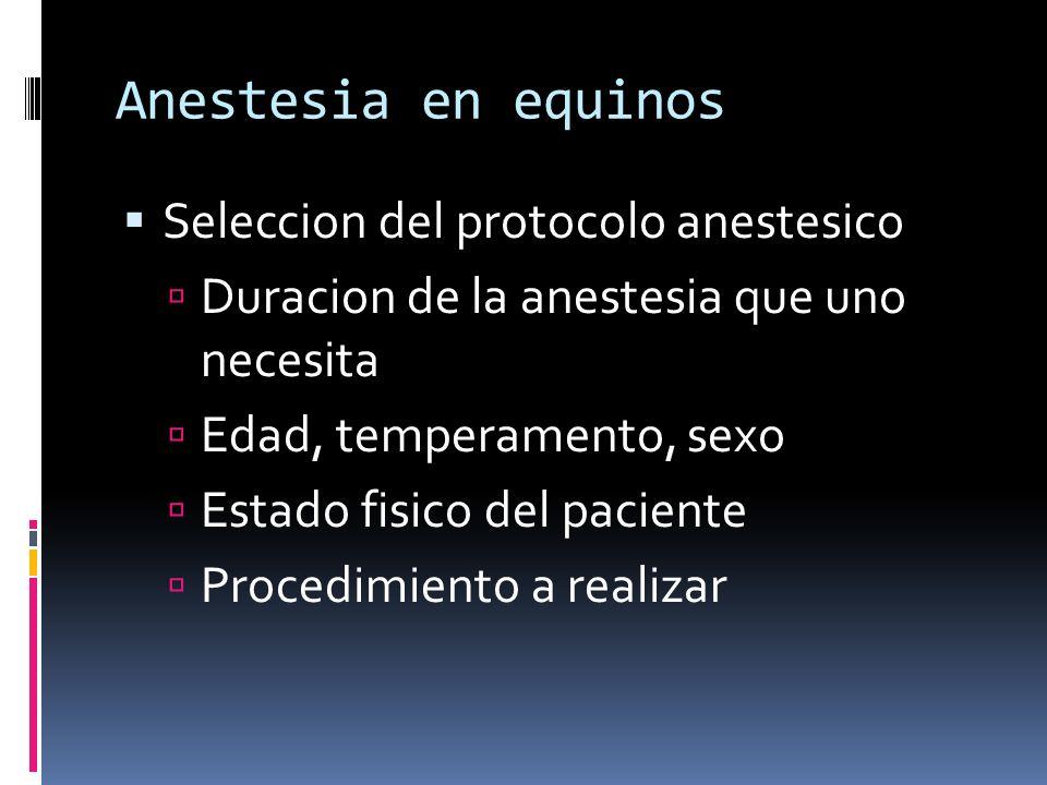 Anestesia en equinos Seleccion del protocolo anestesico Duracion de la anestesia que uno necesita Edad, temperamento, sexo Estado fisico del paciente
