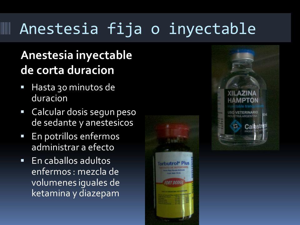 Anestesia fija o inyectable Anestesia inyectable de corta duracion Hasta 30 minutos de duracion Calcular dosis segun peso de sedante y anestesicos En