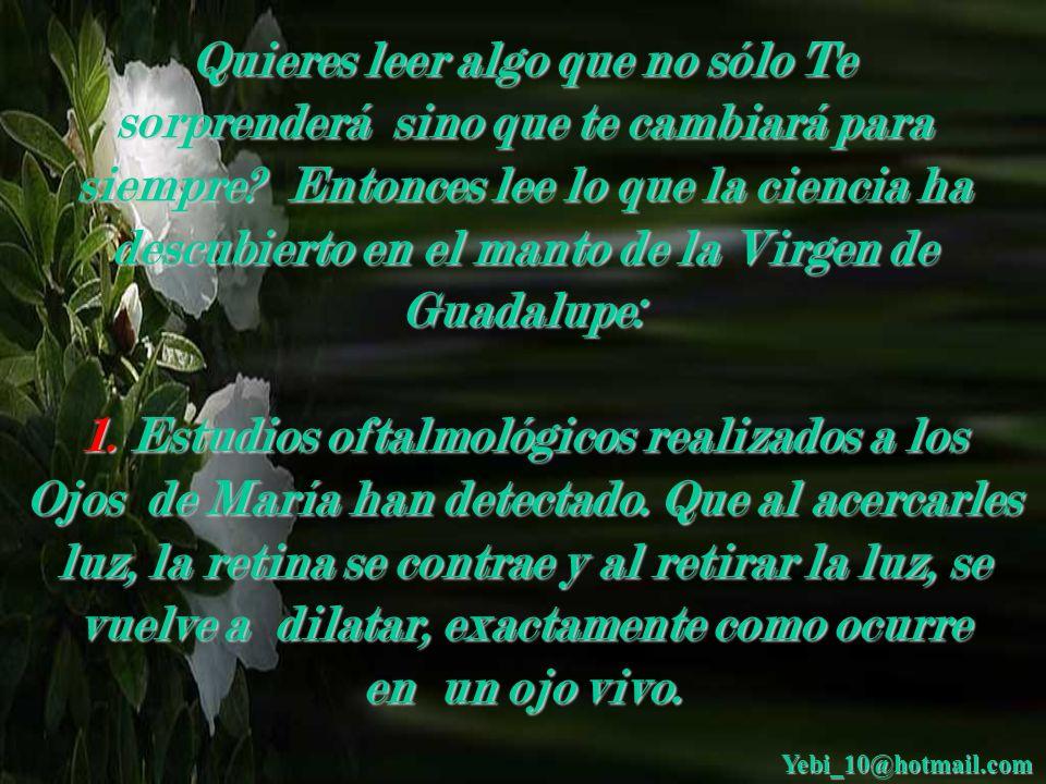 DESCUBRIMIENTOS EN EL MANTO DE LA VIRGEN DE GUADALUPE Con Sonido Yebi_10@hotmail.com