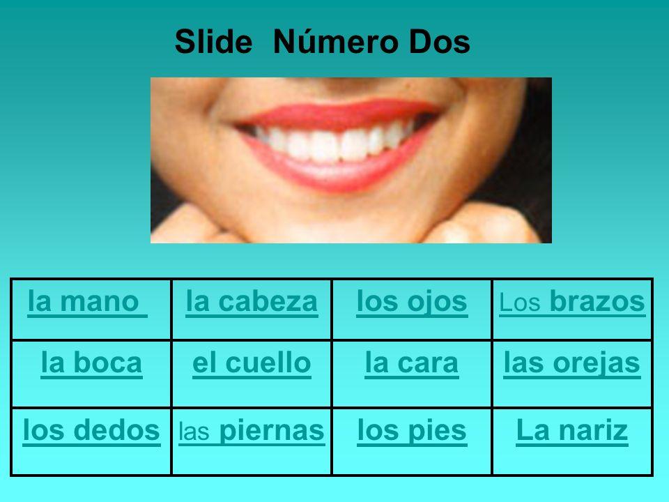 la mano la cabezalos ojos Los brazos la bocael cuellola caralas orejas los dedos las piernaslos piesLa nariz Slide Número Dos