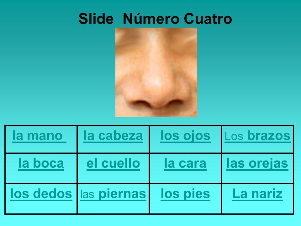 la mano la cabezalos ojos Los brazos la bocael cuellola caralas orejas los dedos las piernaslos piesLa nariz Slide Número Cinco