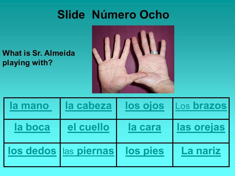 la mano la cabezalos ojos Los brazos la bocael cuellola caralas orejas los dedos las piernaslos piesLa nariz Slide Número Ocho What is Sr.