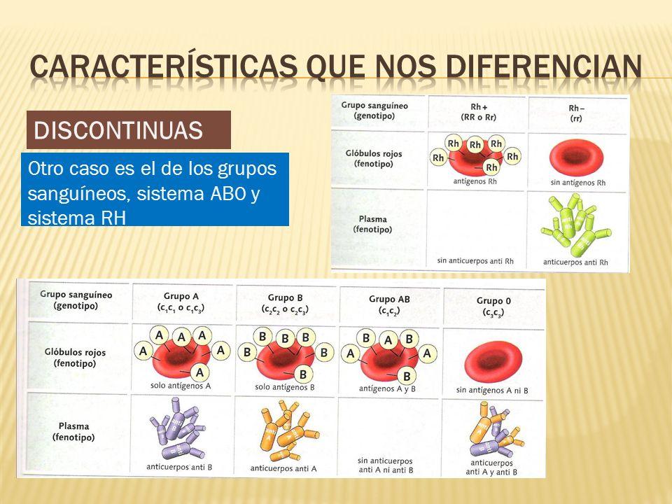 DISCONTINUAS Otro caso es el de los grupos sanguíneos, sistema AB0 y sistema RH