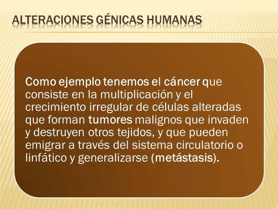 Como ejemplo tenemos el cáncer que consiste en la multiplicación y el crecimiento irregular de células alteradas que forman tumores malignos que invad