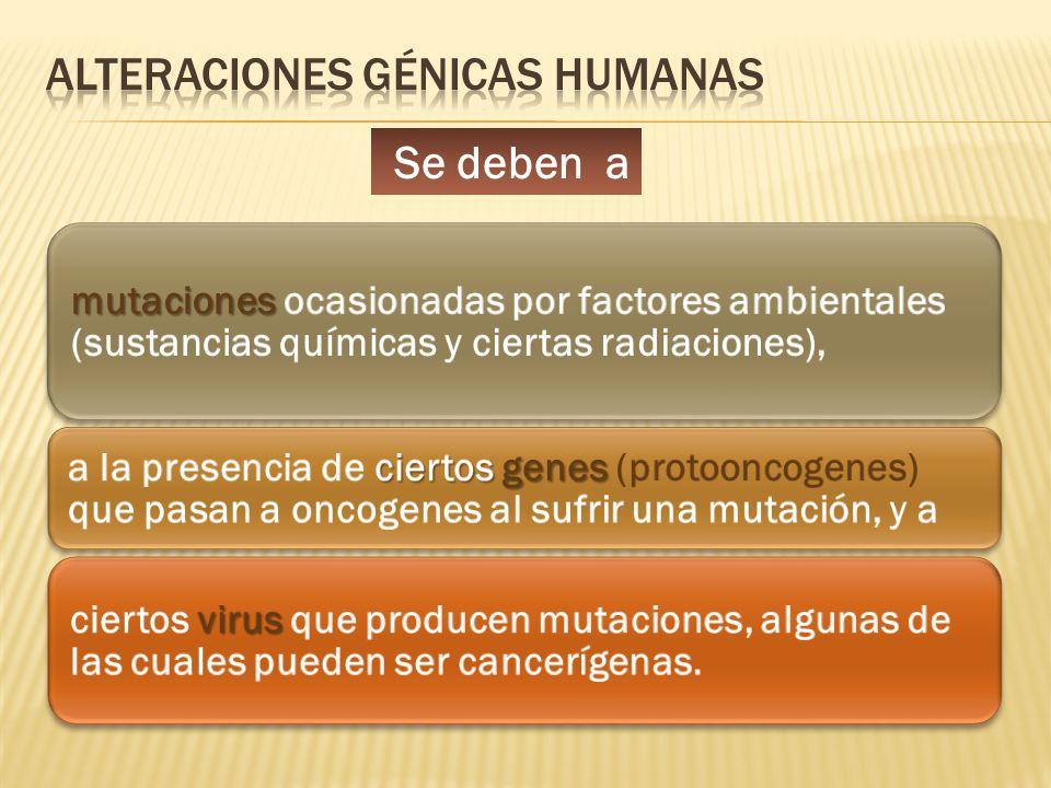 Se deben a mutaciones mutaciones ocasionadas por factores ambientales (sustancias químicas y ciertas radiaciones), ciertos genes a la presencia de cie