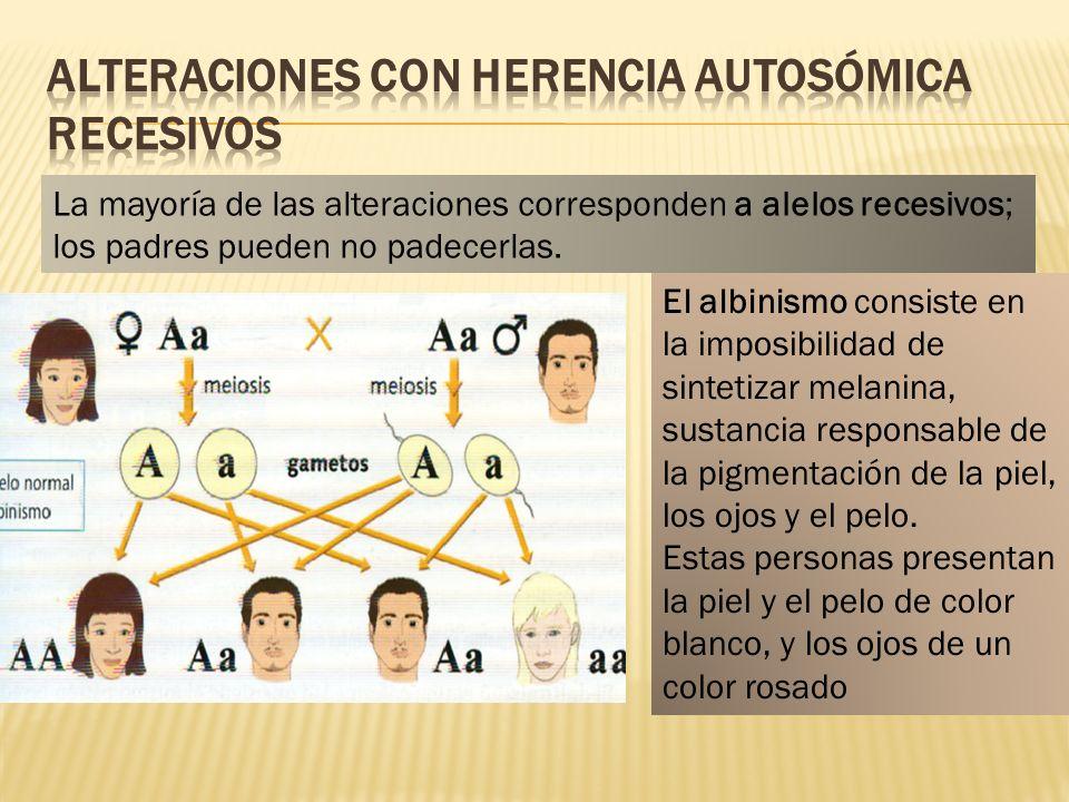 La mayoría de las alteraciones corresponden a alelos recesivos; los padres pueden no padecerlas. El albinismo consiste en la imposibilidad de sintetiz