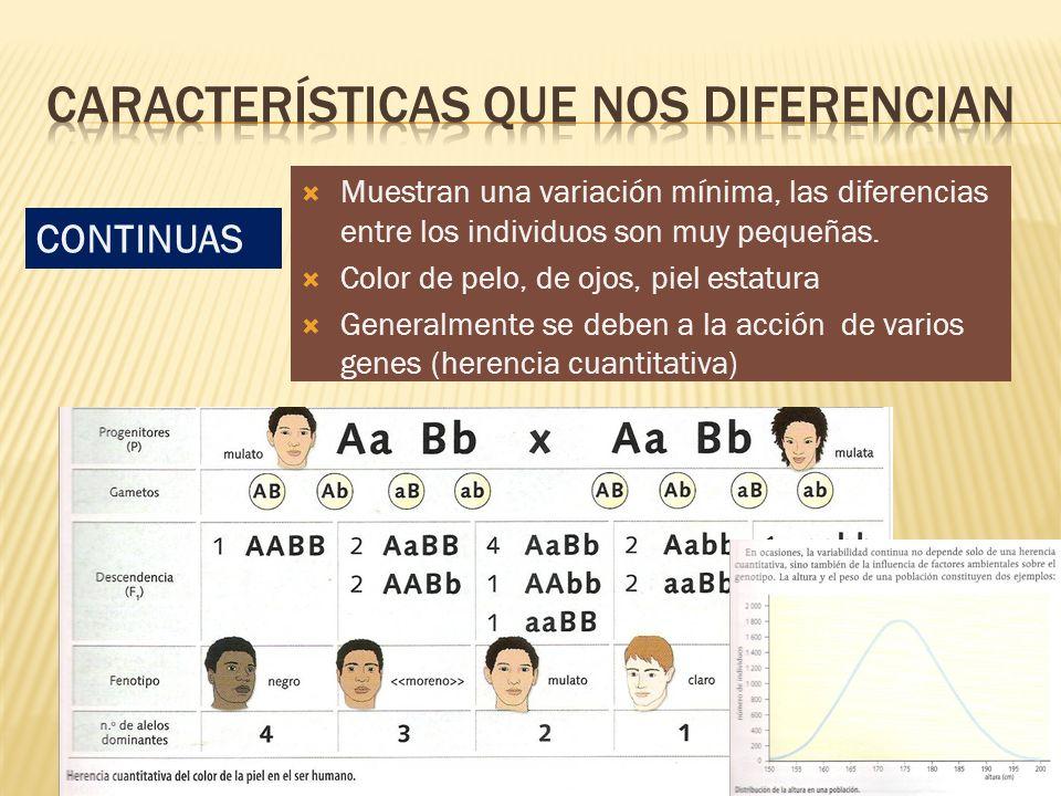 En ocasiones también depende de la influencia de factores ambientales sobre el genotipo (altura y peso de la población)