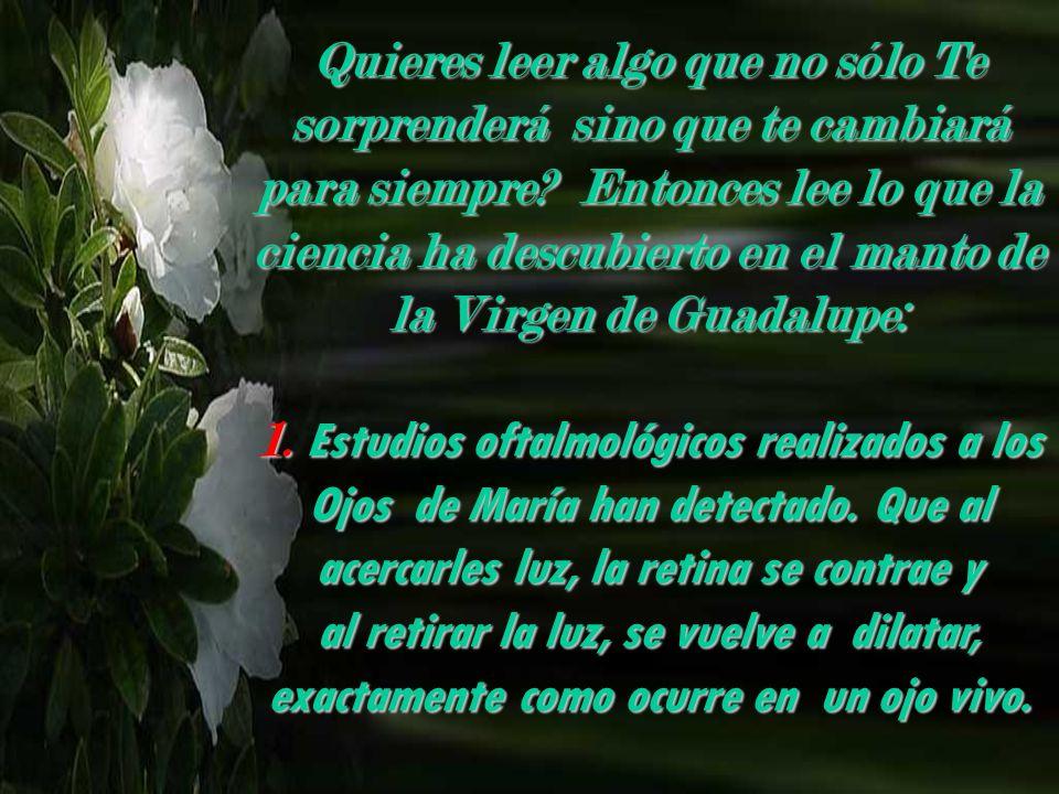DESCUBRIMIENTOS EN EL MANTO DE LA VIRGEN DE GUADALUPE Con Sonido Yebi_10@hotmail.com a free PPS by: Vi ta no ble