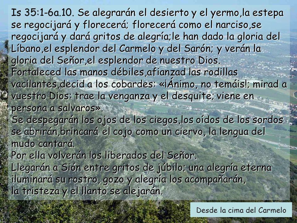 Ciclo A Tercer Domindo de Adviento Gaudete 15 de diciembre de 2013 Música: Campanas de Montserrat