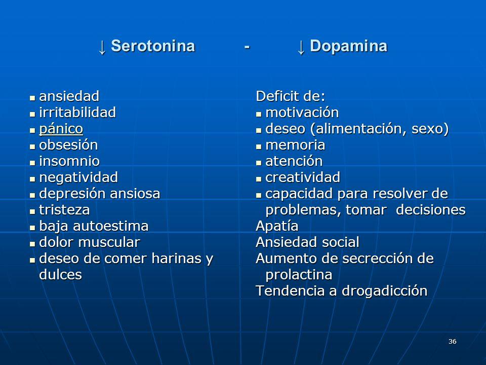 36 Serotonina- Dopamina Serotonina- Dopamina ansiedad ansiedad irritabilidad irritabilidad pánico pánico pánico obsesión obsesión insomnio insomnio ne