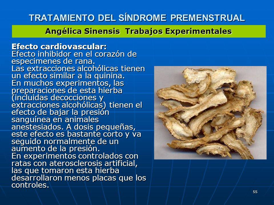 55 TRATAMIENTO DEL SÍNDROME PREMENSTRUAL Efecto cardiovascular: Efecto inhibidor en el corazón de especimenes de rana. Las extracciones alcohólicas ti