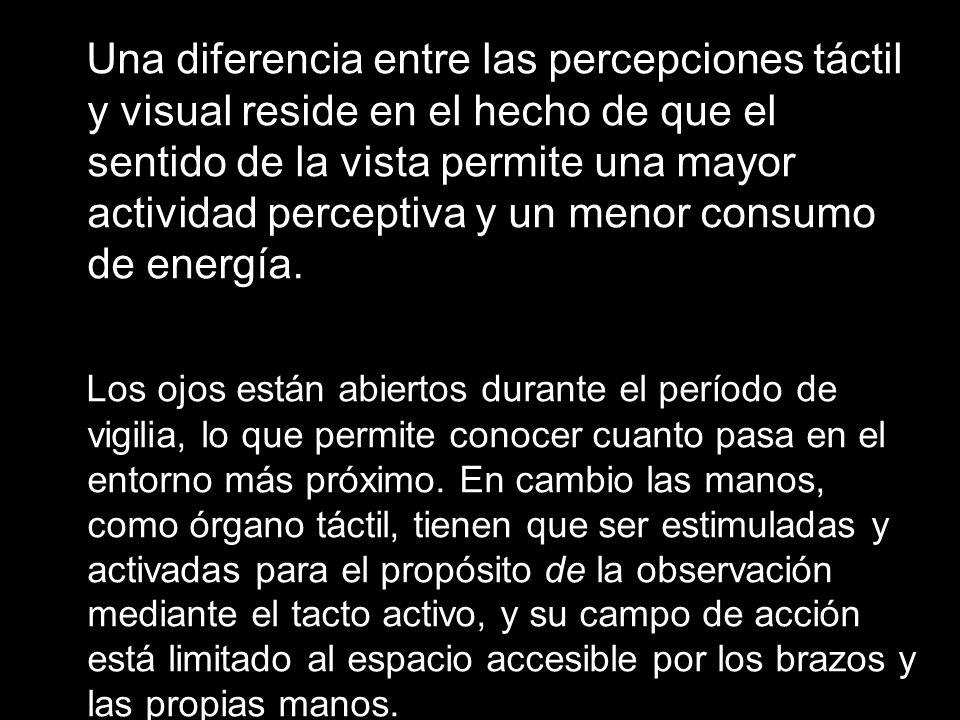 Una diferencia entre las percepciones táctil y visual reside en el hecho de que el sentido de la vista permite una mayor actividad perceptiva y un menor consumo de energía.