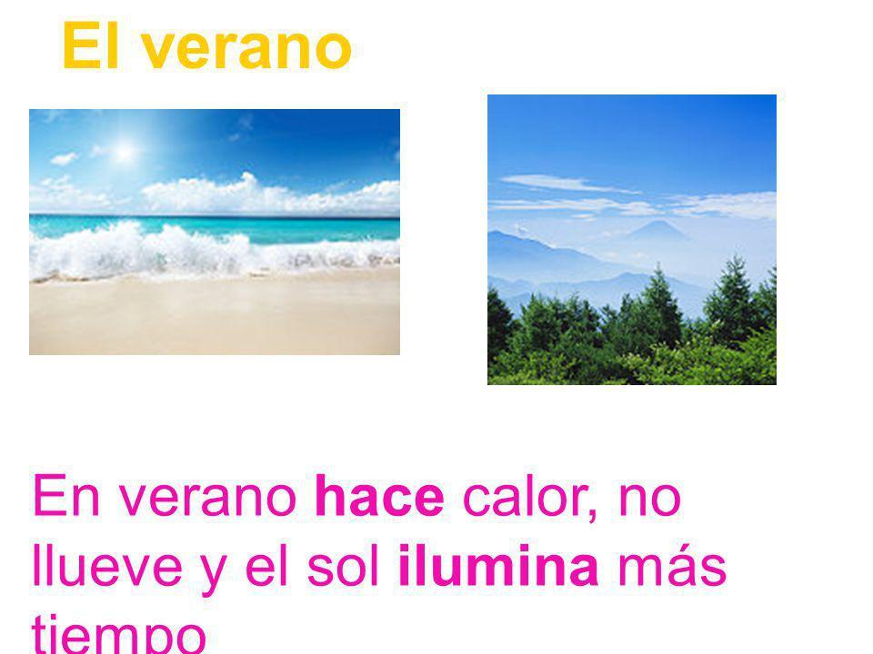 Las estaciones del año son cuatro: verano, otoño, invierno y primavera Las estaciones