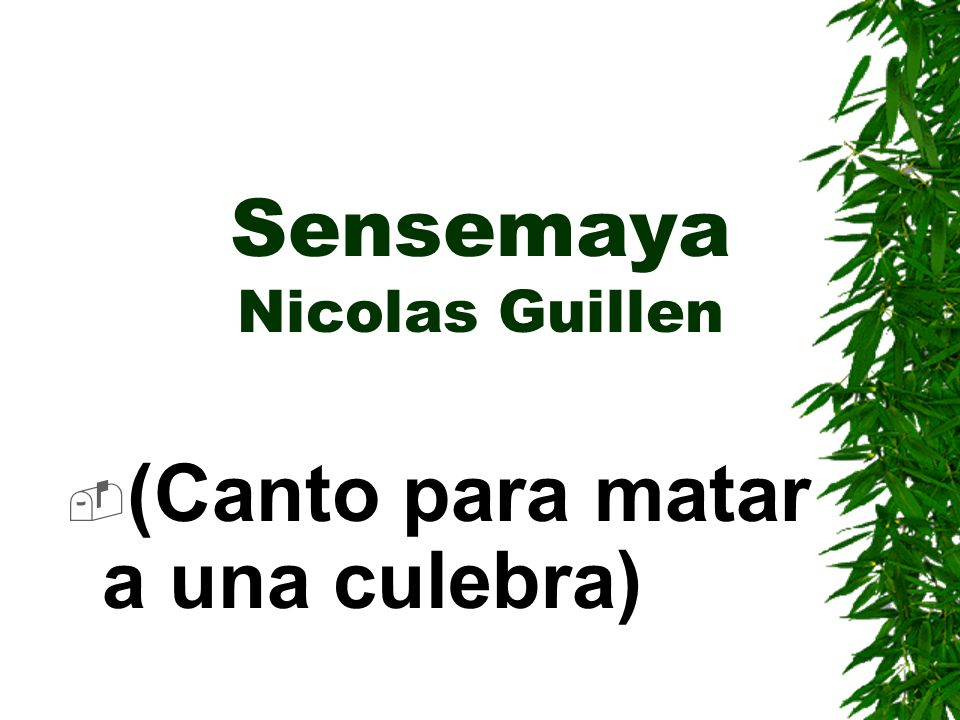 Sensemaya Nicolas Guillen (Canto para matar a una culebra)