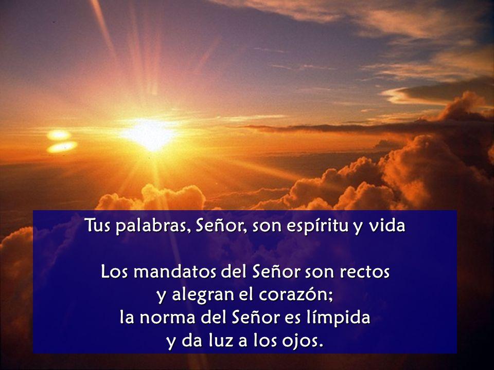 Tus palabras, Señor, son espíritu y vida La ley del Señor es perfecta y es descanso del alma; el precepto del Señor es fiel e instruye al ignorante.