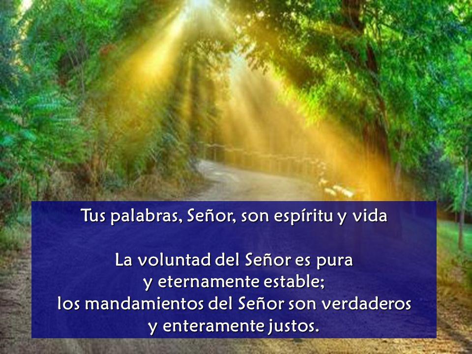 Tus palabras, Señor, son espíritu y vida Los mandatos del Señor son rectos y alegran el corazón; la norma del Señor es límpida y da luz a los ojos.