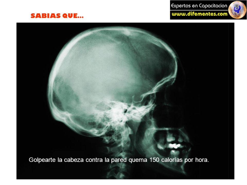 SABIAS QUE… Golpearte la cabeza contra la pared quema 150 calorías por hora.