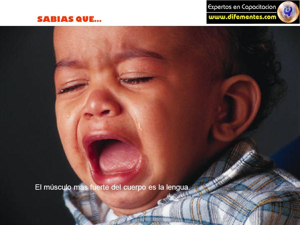 SABIAS QUE… El músculo mas fuerte del cuerpo es la lengua.