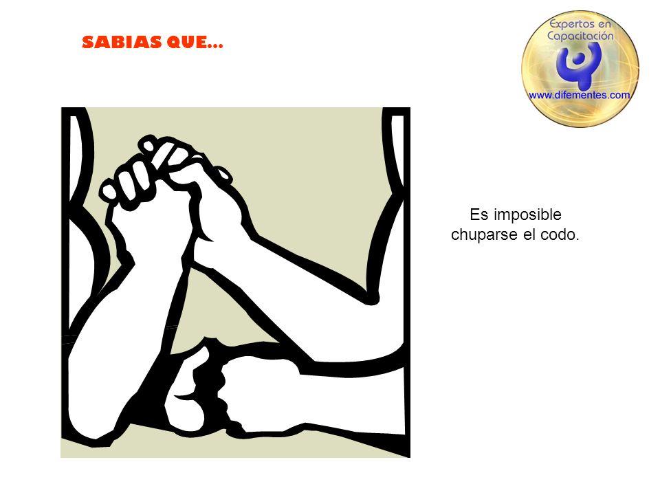SABIAS QUE… Es imposible estornudar con los ojos abiertos.