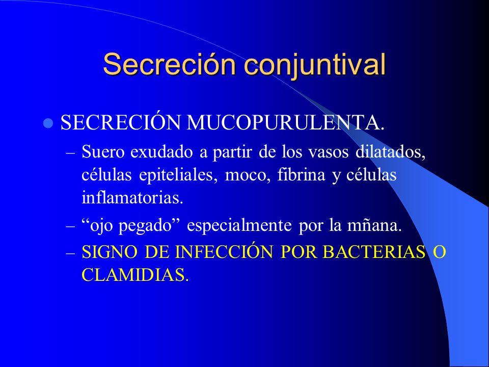 Secreción mucopurulenta.