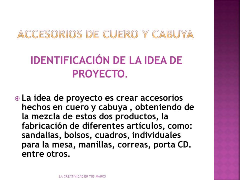 LA CREATIVIDAD EN TUS MANOS IDENTIFICACIÓN DE LA IDEA DE PROYECTO.