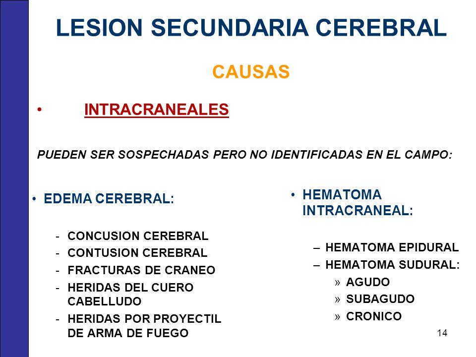 INTRACRANEALES PUEDEN SER SOSPECHADAS PERO NO IDENTIFICADAS EN EL CAMPO: EDEMA CEREBRAL: CONCUSION CEREBRAL CONTUSION CEREBRAL FRACTURAS DE CRANEO