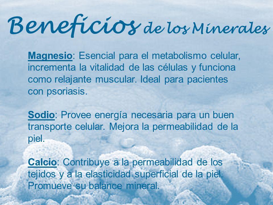 Beneficios de los Minerales Magnesio: Esencial para el metabolismo celular, incrementa la vitalidad de las células y funciona como relajante muscular.