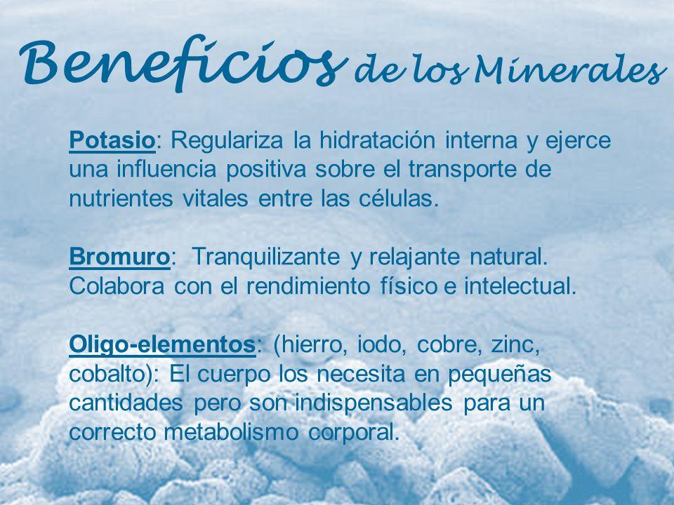 Beneficios de los Minerales Potasio: Regulariza la hidratación interna y ejerce una influencia positiva sobre el transporte de nutrientes vitales entr