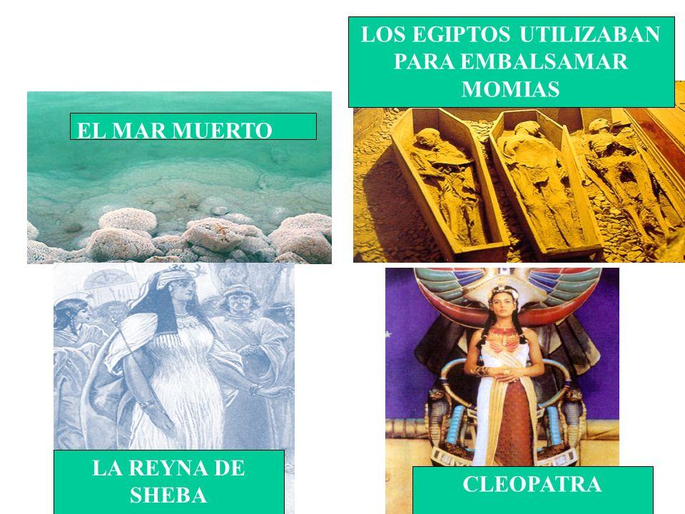 EL MAR MUERTO LOS EGIPTOS UTILIZABAN PARA EMBALSAMAR MOMIAS LA REYNA DE SHEBA CLEOPATRA
