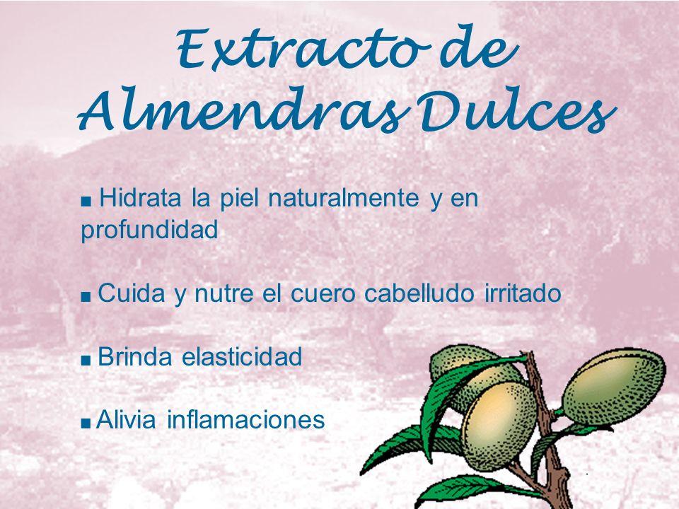 Extracto de Almendras Dulces Hidrata la piel naturalmente y en profundidad Cuida y nutre el cuero cabelludo irritado Brinda elasticidad Alivia inflama