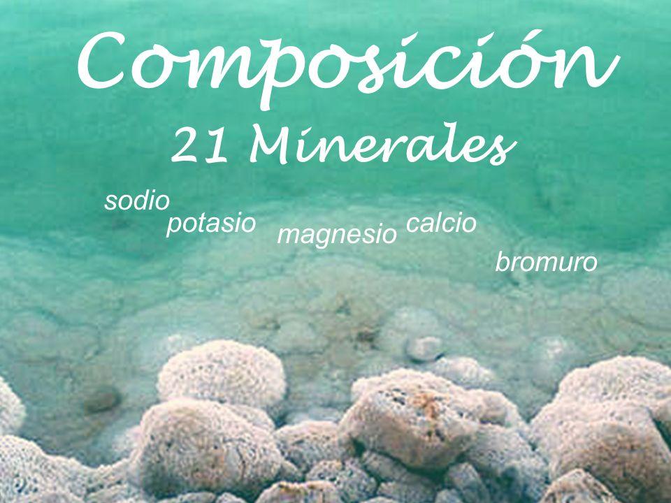 Composición Mar Muerto Cloruro de Magnesio14,5% Cloruro de Sodio7,5% Cloruro de Calcio3.8 Cloruro de Potasio1,2% Bromuro de Magnesio0,5% Otros5,5% Agua72,5%