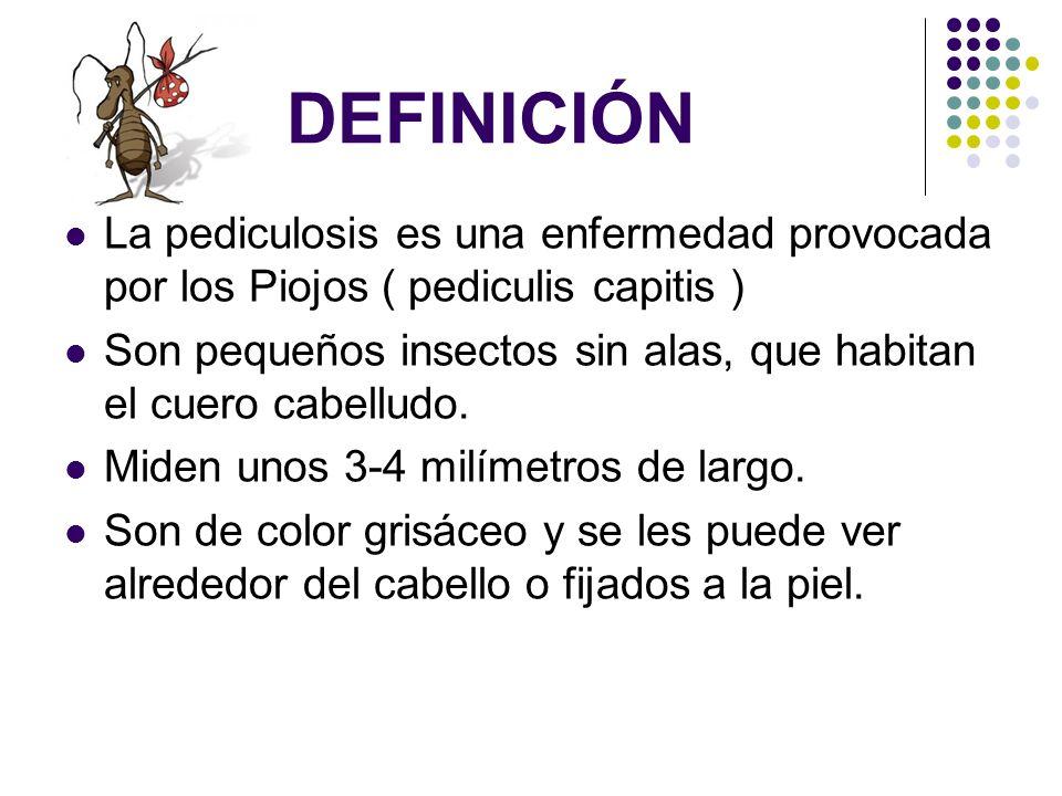 DEFINICIÓN La pediculosis es una enfermedad provocada por los Piojos ( pediculis capitis ) Son pequeños insectos sin alas, que habitan el cuero cabell