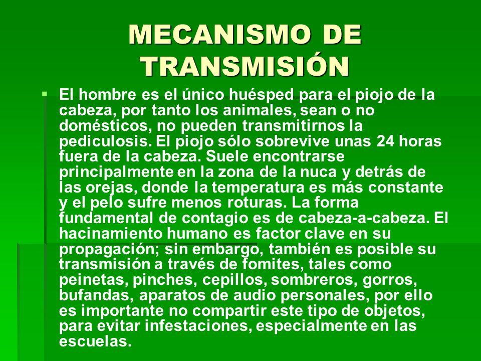 MECANISMO DE TRANSMISIÓN El hombre es el único huésped para el piojo de la cabeza, por tanto los animales, sean o no domésticos, no pueden transmitirn