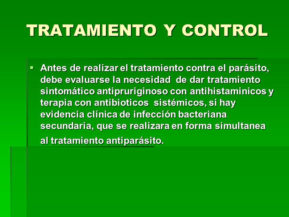 TRATAMIENTO Y CONTROL Antes de realizar el tratamiento contra el parásito, debe evaluarse la necesidad de dar tratamiento sintomático antipruriginoso
