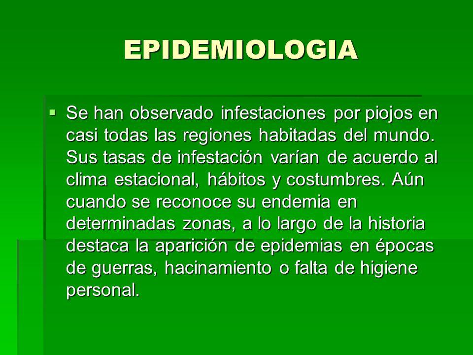 EPIDEMIOLOGIA Se han observado infestaciones por piojos en casi todas las regiones habitadas del mundo. Sus tasas de infestación varían de acuerdo al