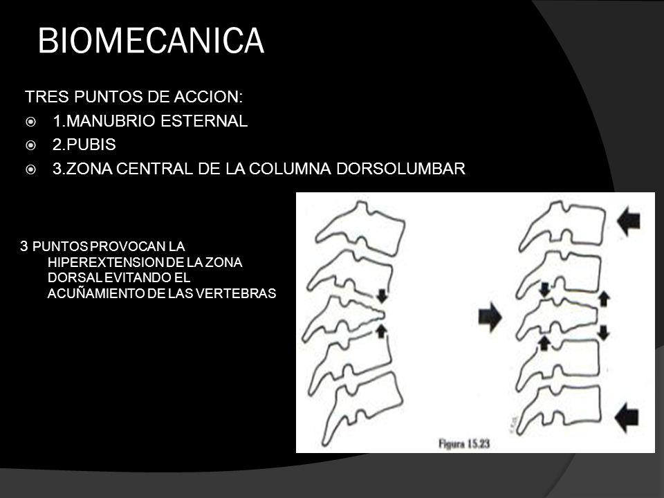 BIOMECANICA TRES PUNTOS DE ACCION: 1.MANUBRIO ESTERNAL 2.PUBIS 3.ZONA CENTRAL DE LA COLUMNA DORSOLUMBAR 3 PUNTOS PROVOCAN LA HIPEREXTENSION DE LA ZONA