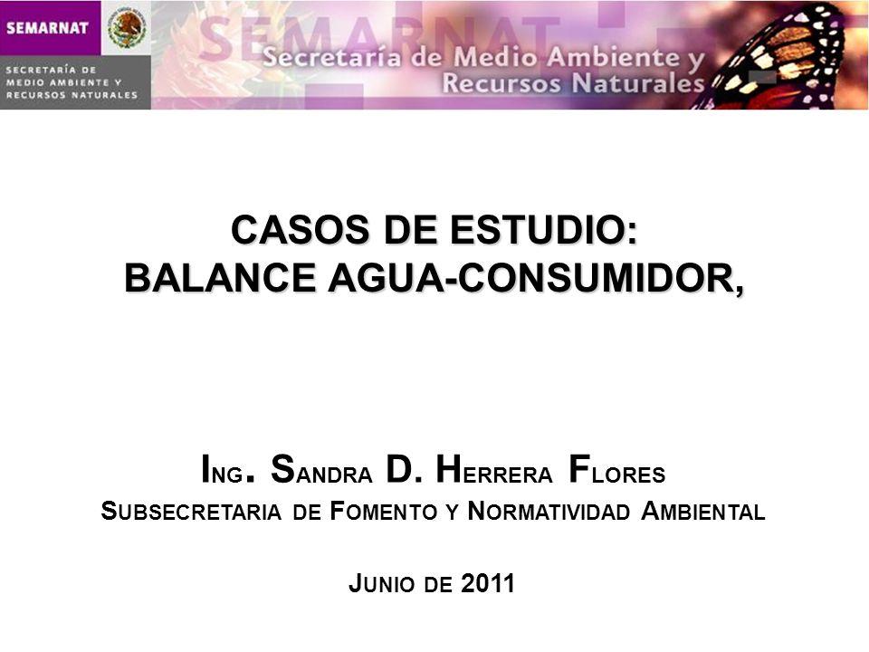 CASOS DE ESTUDIO: BALANCE AGUA-CONSUMIDOR, I NG. S ANDRA D. H ERRERA F LORES S UBSECRETARIA DE F OMENTO Y N ORMATIVIDAD A MBIENTAL J UNIO DE 2011