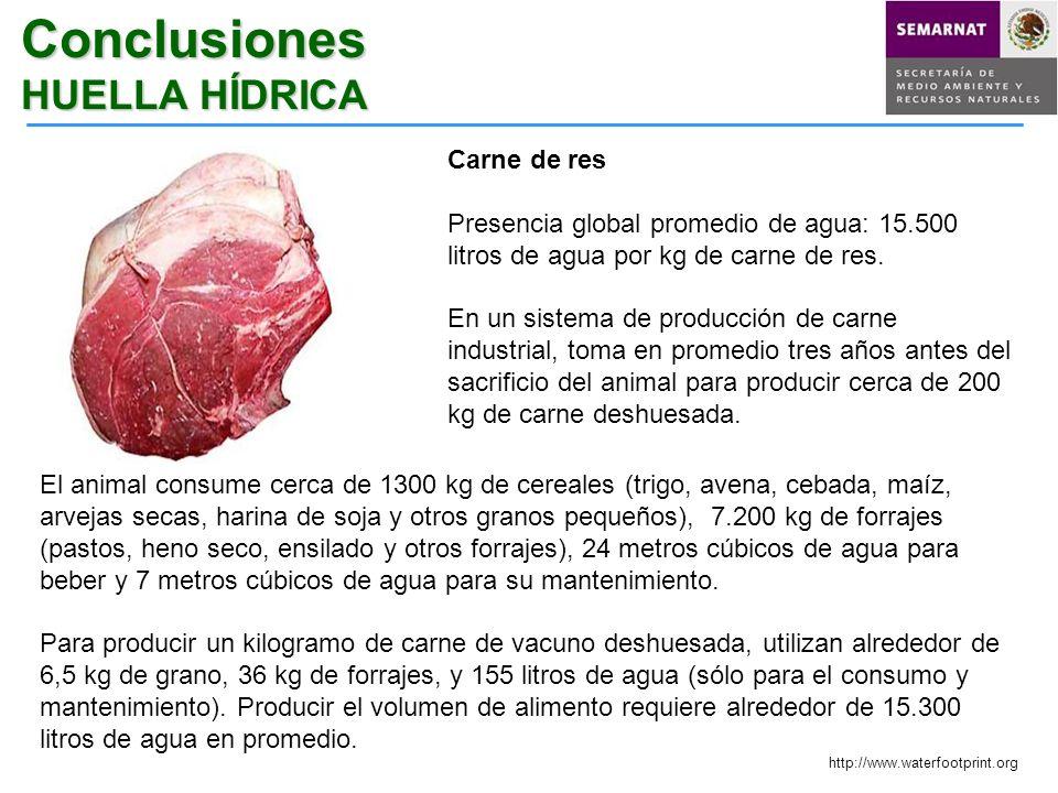 Carne de res Presencia global promedio de agua: 15.500 litros de agua por kg de carne de res. En un sistema de producción de carne industrial, toma en