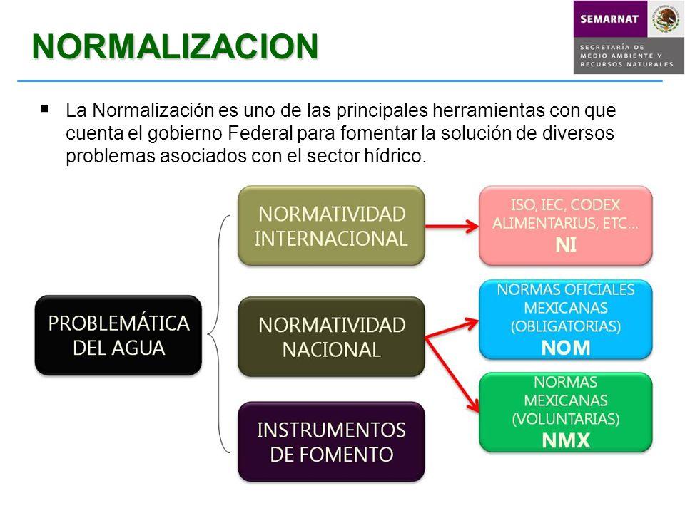 NORMALIZACION La Normalización es uno de las principales herramientas con que cuenta el gobierno Federal para fomentar la solución de diversos problem