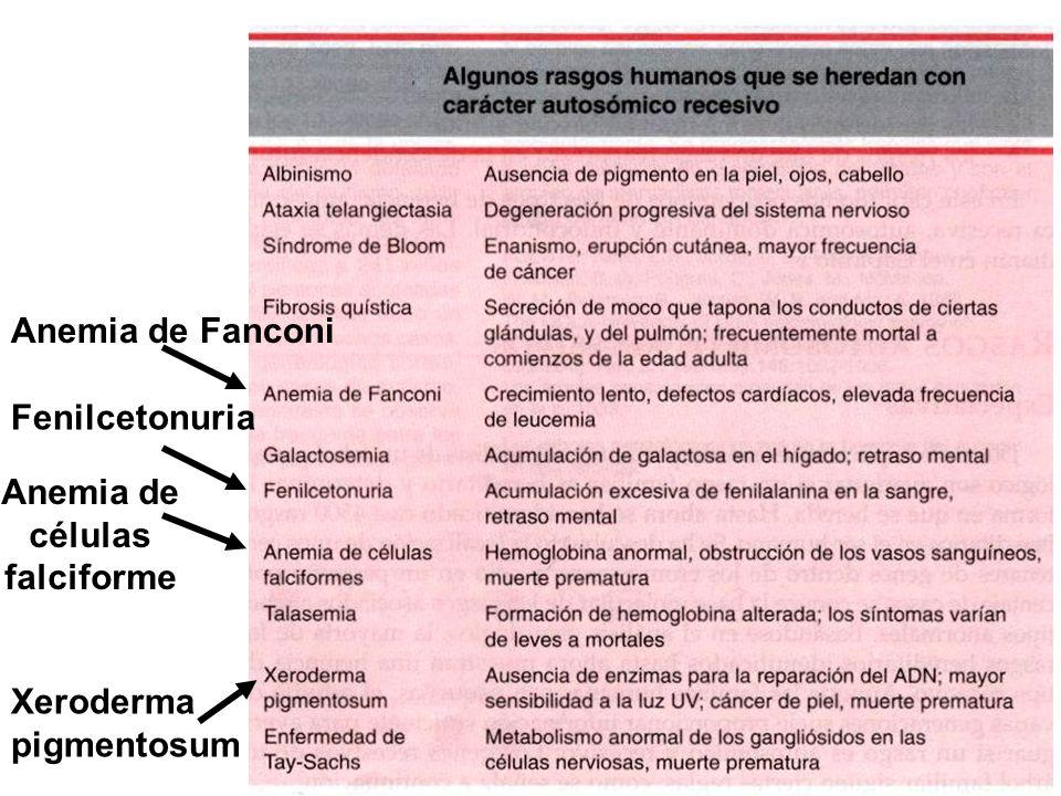Fenilcetonuria Xeroderma pigmentosum Anemia de células falciforme Anemia de Fanconi