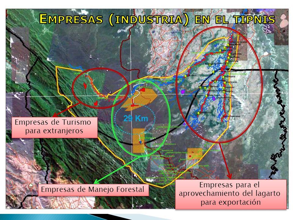 Empresas de Manejo Forestal Empresas para el aprovechamiento del lagarto para exportación Empresas para el aprovechamiento del lagarto para exportació