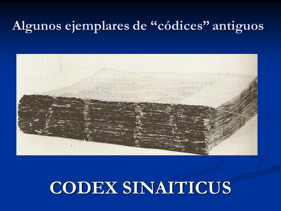 Algunos ejemplares de códices antiguos CODEX SINAITICUS