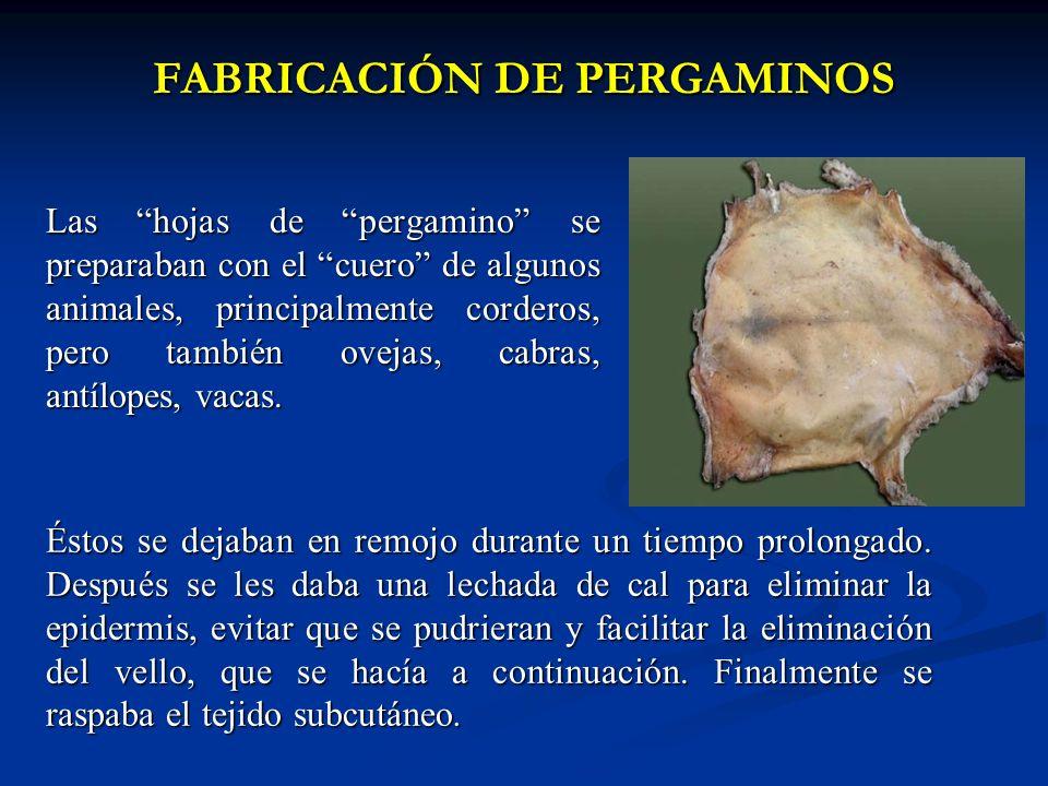 FABRICACIÓN DE PERGAMINOS FABRICACIÓN DE PERGAMINOS Las hojas de pergamino se preparaban con el cuero de algunos animales, principalmente corderos, pe